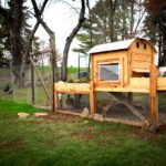 10 hacks you will want to steal for the chicken house – project zenstead