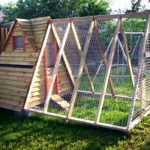 Backyard chicken house: 6 steps (with pictures)