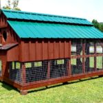 Backyard chicken house designs – how can you choose?