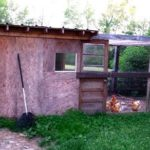 Build-a-chicken-coop