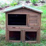 Building chicken coops for dummies cheat sheet – dummies
