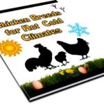 Chicken house designs, chicken house plans, chicken house, build chicken house, chicken house