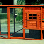 Chicken house plans review – creating a chicken house