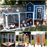 Construct your own chicken house – a tale of chickens –