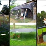 Diy trampoline chicken house
