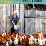 Diytipsandtricks – chicken diy guides: not only a blueprint