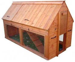 This is a double story ark coop which houses more chickens than other coops.