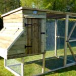 Easy diy chicken house plans review
