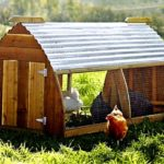 Essential steps to construct simple chicken house in proper way – icce