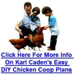 Karl caden – easy diy chicken house plans
