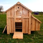 My chicken house strategy - fundamental chicken house provisions