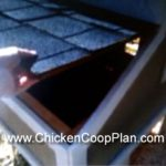 Raising chickens : keeping chickens inside your backyard: 3 common chicken house mistakes to prevent