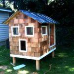 The main one where i built a chicken house - trevormade