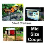 What sort of chicken house design is better? - timber creek farm