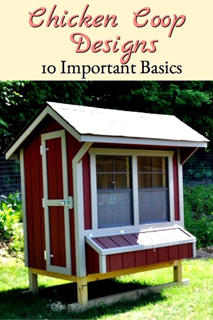 When choosing among chicken coop designs, consider these important basics