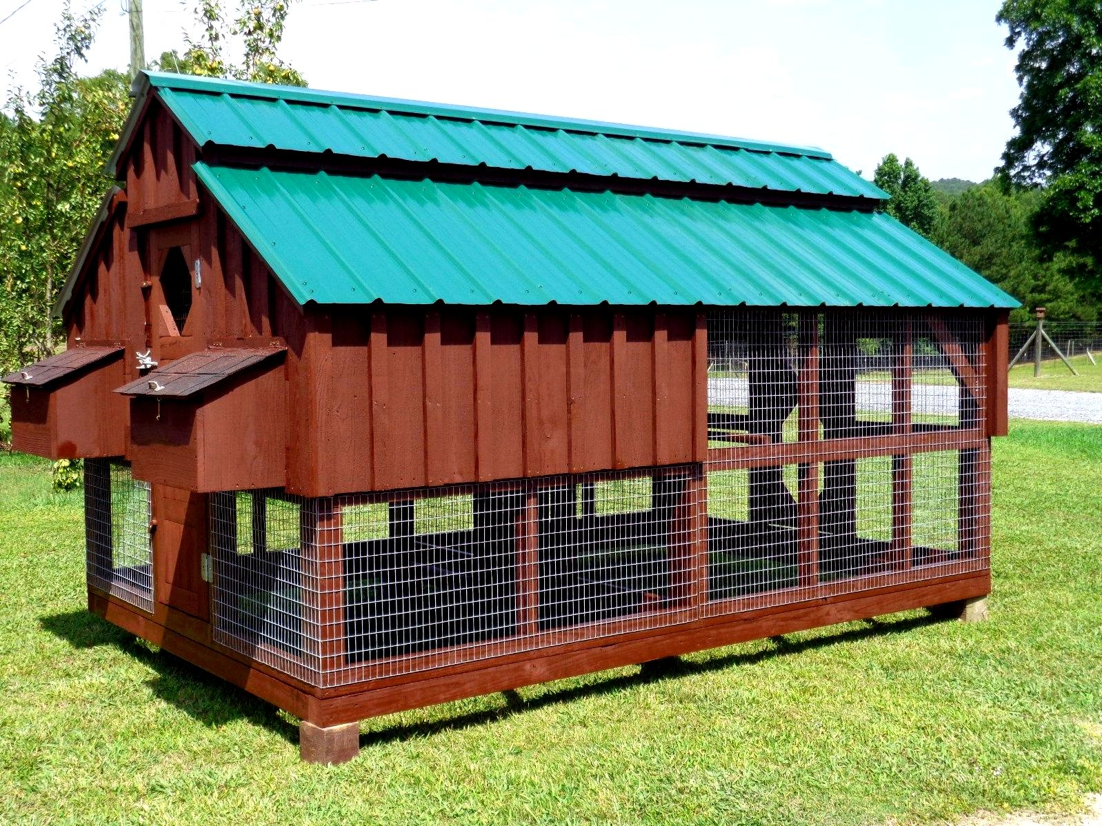 Backyard chicken house designs - how can you choose? than being not big enough