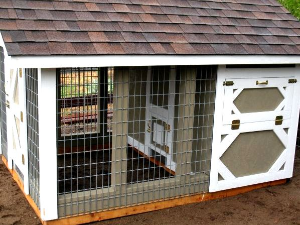 Add home windows for your chicken house for air conditioning - hobby farms poor chickens did prior
