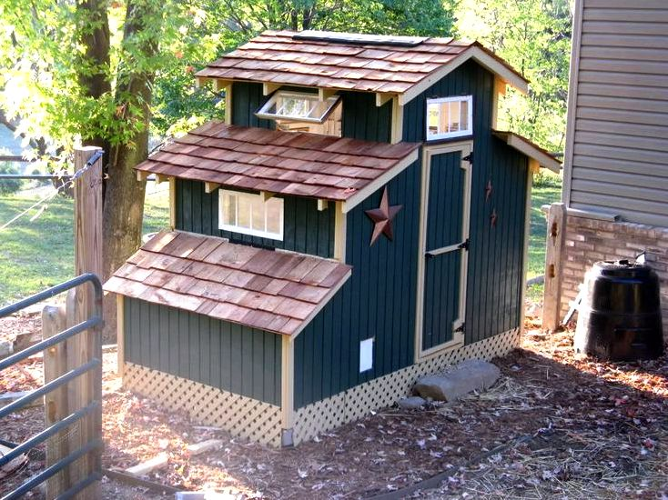 Are you contemplating raising chickens? – my chicken coops excellence of