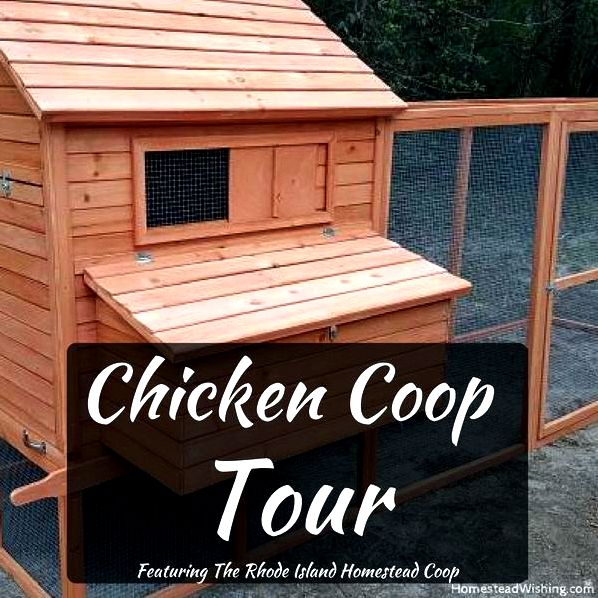 Chicken-coop-tour. Tour of the Rhode Island Homestead Chicken Coop, from the #ad The Chicken Coop Company. Homesteading, chickens, chicken lady.  Homestead Wishing, Author, Kristi Wheeler  http://homesteadwishing.com/chicken-coop-tour/