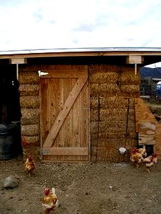 Chicken house insulation? (chickens forum at permies) dogs however
