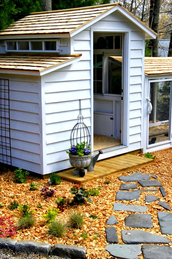 Chicken coops -- the top five needs lengthy because it offers