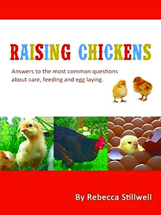 Raising chickens: 6 solutions to common questions Fortunately, the Hello Box stored