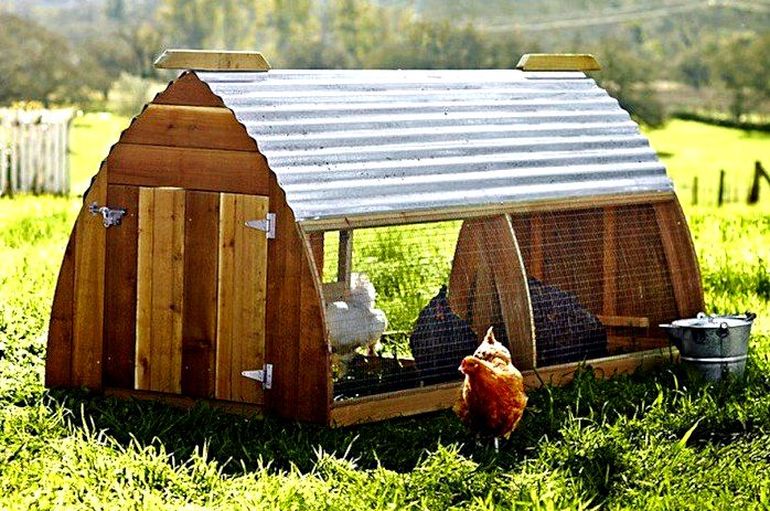 Essential steps to construct simple chicken house in proper way ...