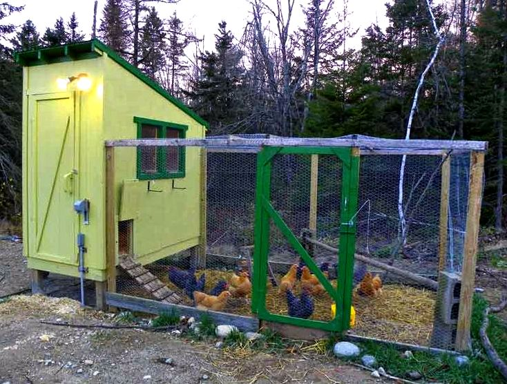 Free downeast thunder farm chicken house plans few photos when