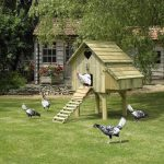 The chicken house is done…enough.