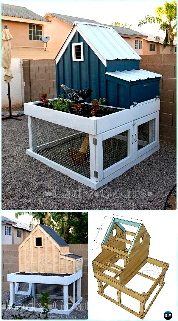 New diy chicken house – invironment – medium all roost