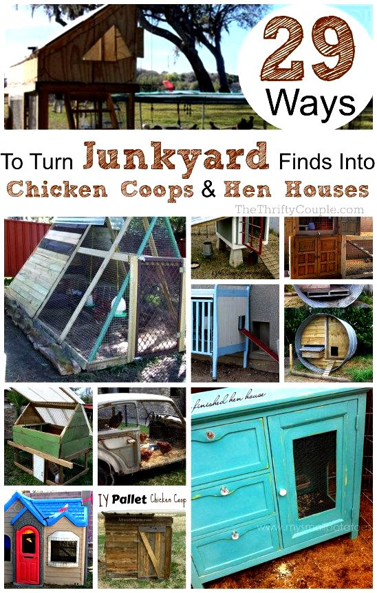New diy chicken house – invironment – medium go with all